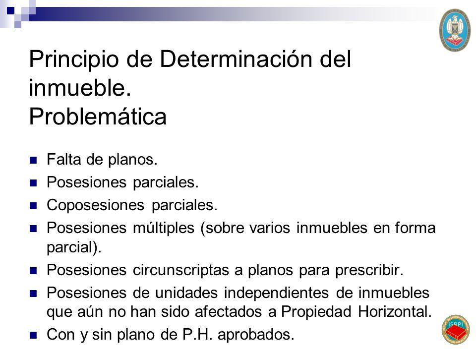 Principio de Determinación del inmueble. Problemática Falta de planos. Posesiones parciales. Coposesiones parciales. Posesiones múltiples (sobre vario
