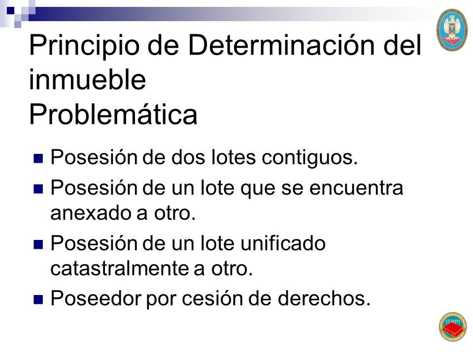 Principio de Determinación del inmueble Problemática Posesión de dos lotes contiguos. Posesión de un lote que se encuentra anexado a otro. Posesión de