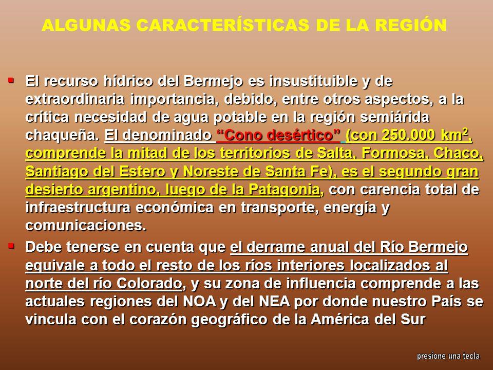ALGUNAS CARACTERÍSTICAS DE LA REGIÓN El recurso hídrico del Bermejo es insustituible y de extraordinaria importancia, debido, entre otros aspectos, a
