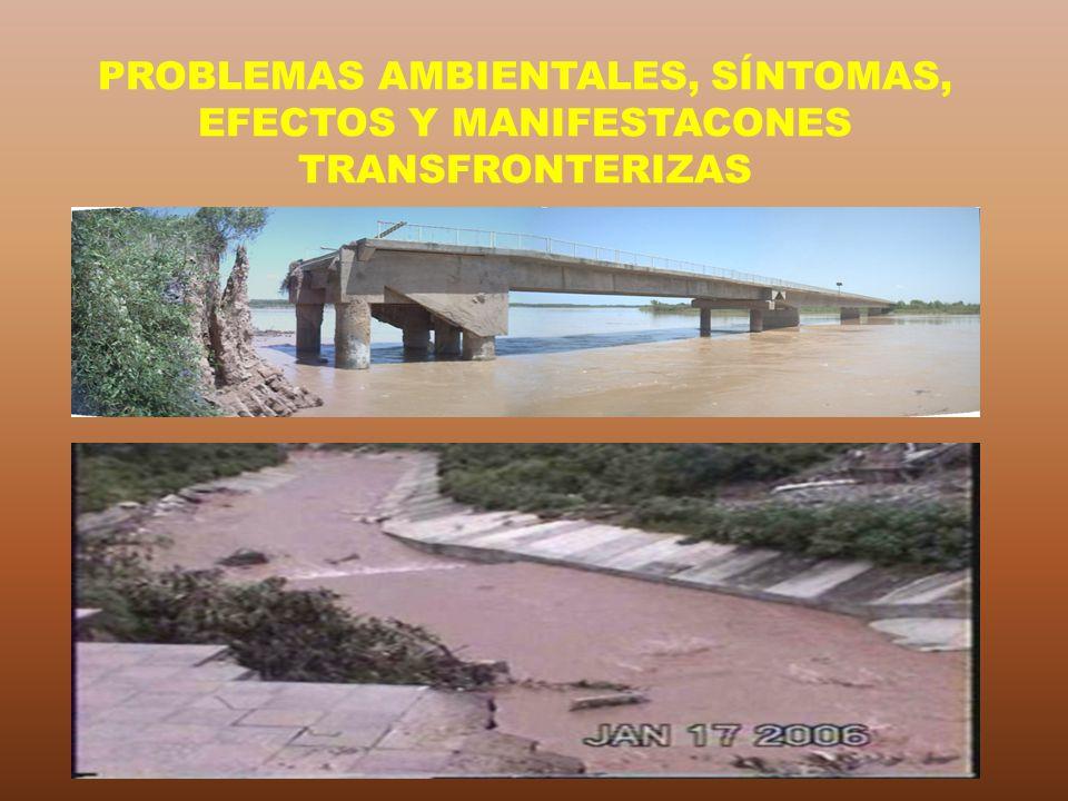 PROBLEMAS AMBIENTALES, SÍNTOMAS, EFECTOS Y MANIFESTACONES TRANSFRONTERIZAS