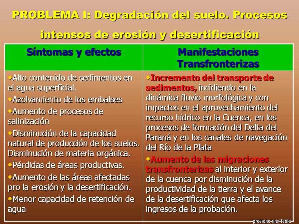 PROBLEMA I: Degradación del suelo. Procesos intensos de erosión y desertificación Síntomas y efectos Manifestaciones Transfronterizas Alto contenido d