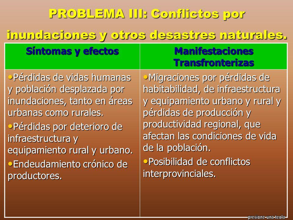 PROBLEMA III: Conflictos por inundaciones y otros desastres naturales. Síntomas y efectos Manifestaciones Transfronterizas Pérdidas de vidas humanas y