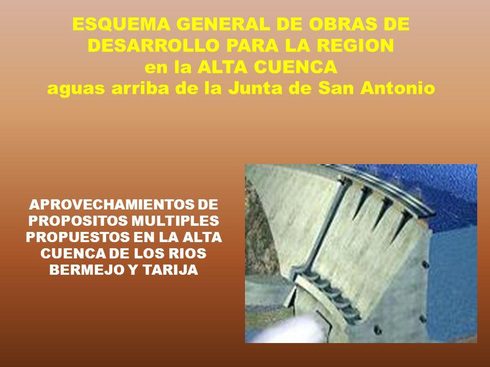 APROVECHAMIENTOS DE PROPOSITOS MULTIPLES PROPUESTOS EN LA ALTA CUENCA DE LOS RIOS BERMEJO Y TARIJA ESQUEMA GENERAL DE OBRAS DE DESARROLLO PARA LA REGI
