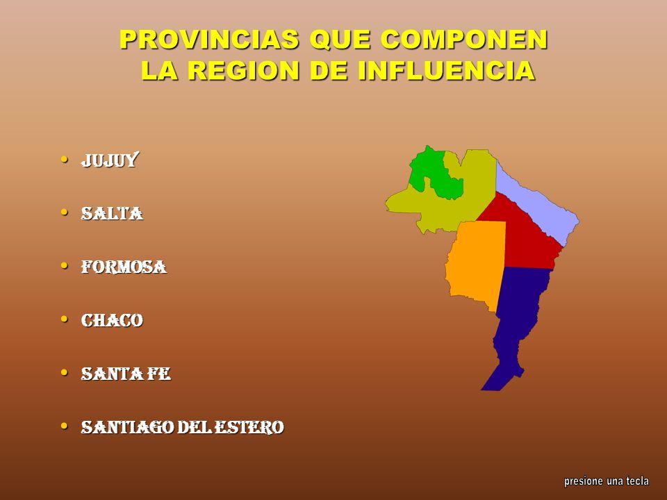 PROVINCIAS QUE COMPONEN LA REGION DE INFLUENCIA Jujuy Jujuy Salta Salta Formosa Formosa Chaco Chaco Santa Fe Santa Fe Santiago del Estero Santiago del