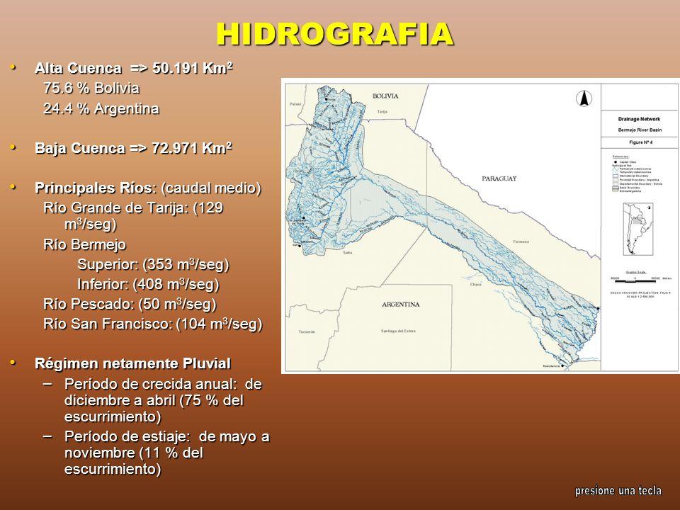 HIDROGRAFIA Alta Cuenca => 50.191 Km 2 Alta Cuenca => 50.191 Km 2 75.6 % Bolivia 24.4 % Argentina Baja Cuenca => 72.971 Km 2 Baja Cuenca => 72.971 Km