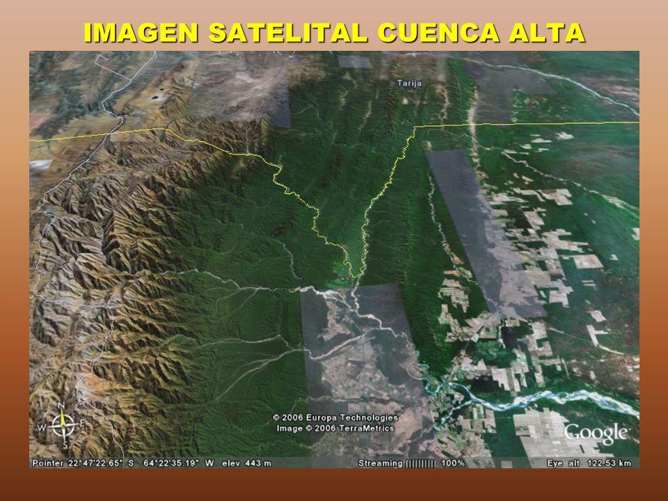 IMAGEN SATELITAL CUENCA ALTA