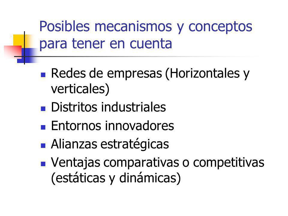 Posibles mecanismos y conceptos para tener en cuenta Redes de empresas (Horizontales y verticales) Distritos industriales Entornos innovadores Alianzas estratégicas Ventajas comparativas o competitivas (estáticas y dinámicas)