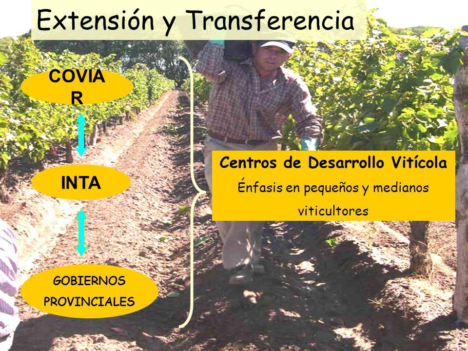 COVIA R GOBIERNOS PROVINCIALES INTA Centros de Desarrollo Vitícola Énfasis en pequeños y medianos viticultores Extensión y Transferencia