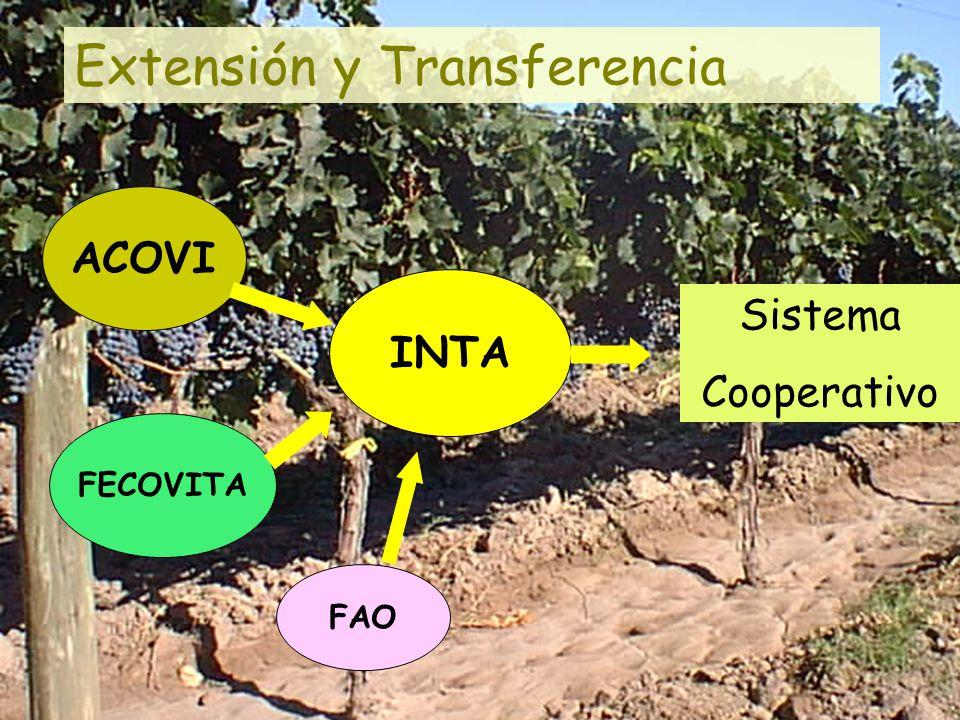 INTA ACOVI FECOVITA FAO Sistema Cooperativo