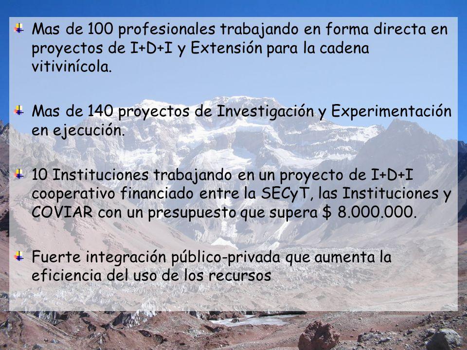 Mas de 100 profesionales trabajando en forma directa en proyectos de I+D+I y Extensión para la cadena vitivinícola. Mas de 140 proyectos de Investigac