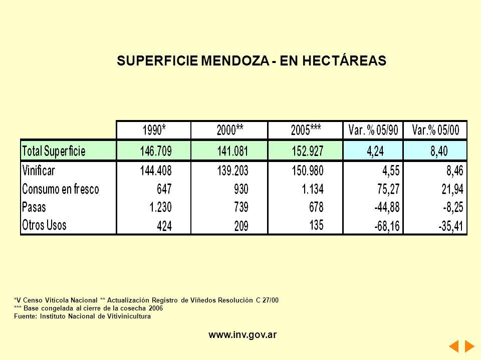 *V Censo Vitícola Nacional ** Actualización Registro de Viñedos Resolución C 27/00 *** Base congelada al cierre de la cosecha 2006 Fuente: Instituto N