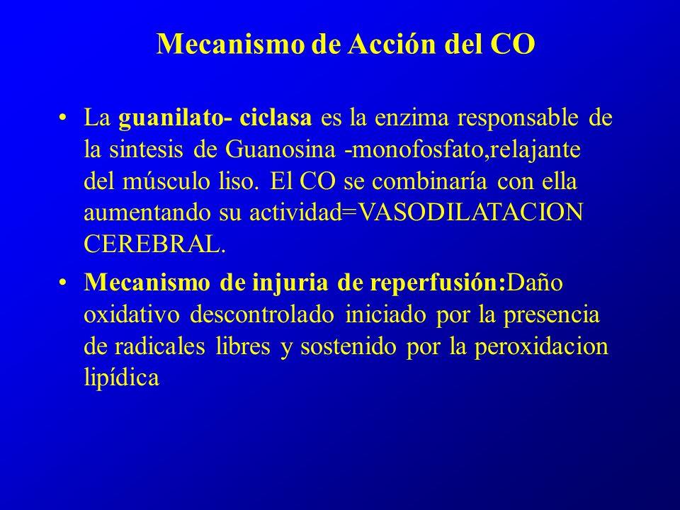 Mecanismo de Acción del CO La guanilato- ciclasa es la enzima responsable de la sintesis de Guanosina -monofosfato,relajante del músculo liso. El CO s