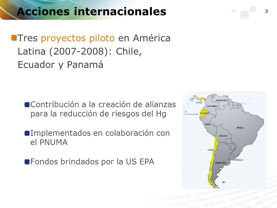 3 Acciones internacionales Tres proyectos piloto en América Latina (2007-2008): Chile, Ecuador y Panamá Contribución a la creación de alianzas para la reducción de riesgos del Hg Implementados en colaboración con el PNUMA Fondos brindados por la US EPA