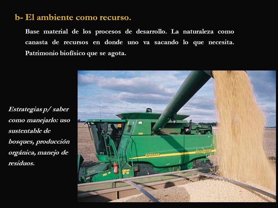 b- El ambiente como recurso. Base material de los procesos de desarrollo. La naturaleza como canasta de recursos en donde uno va sacando lo que necesi