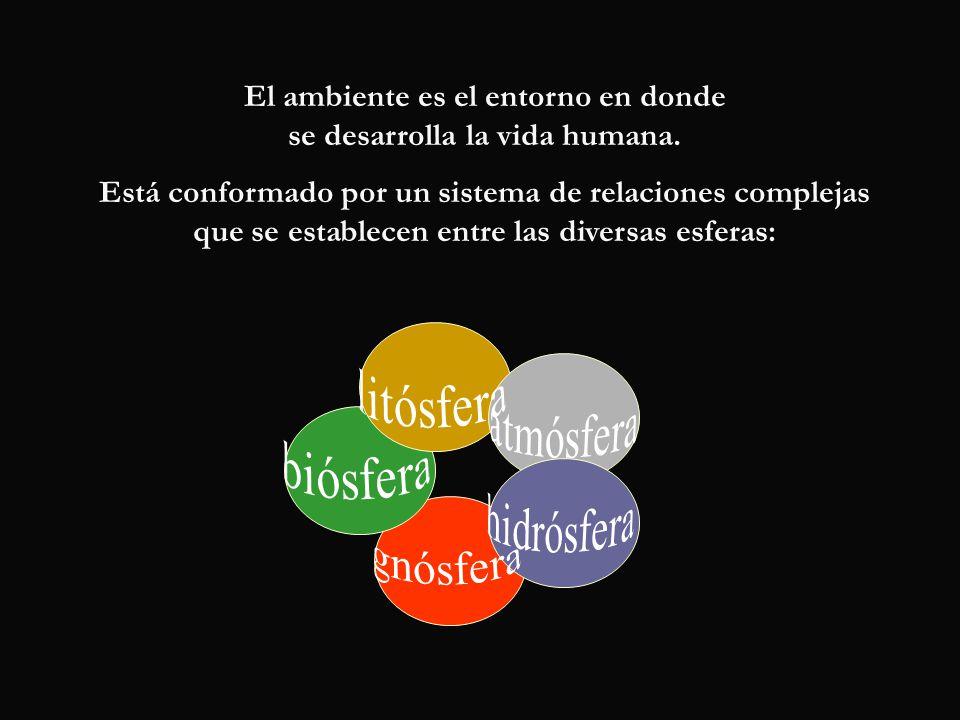 El ambiente es el entorno en donde se desarrolla la vida humana. Está conformado por un sistema de relaciones complejas que se establecen entre las di