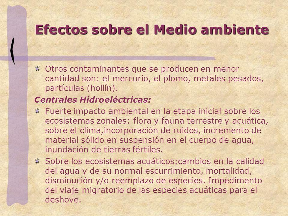 Efectos sobre el Medio ambiente Otros contaminantes que se producen en menor cantidad son: el mercurio, el plomo, metales pesados, partículas (hollín).