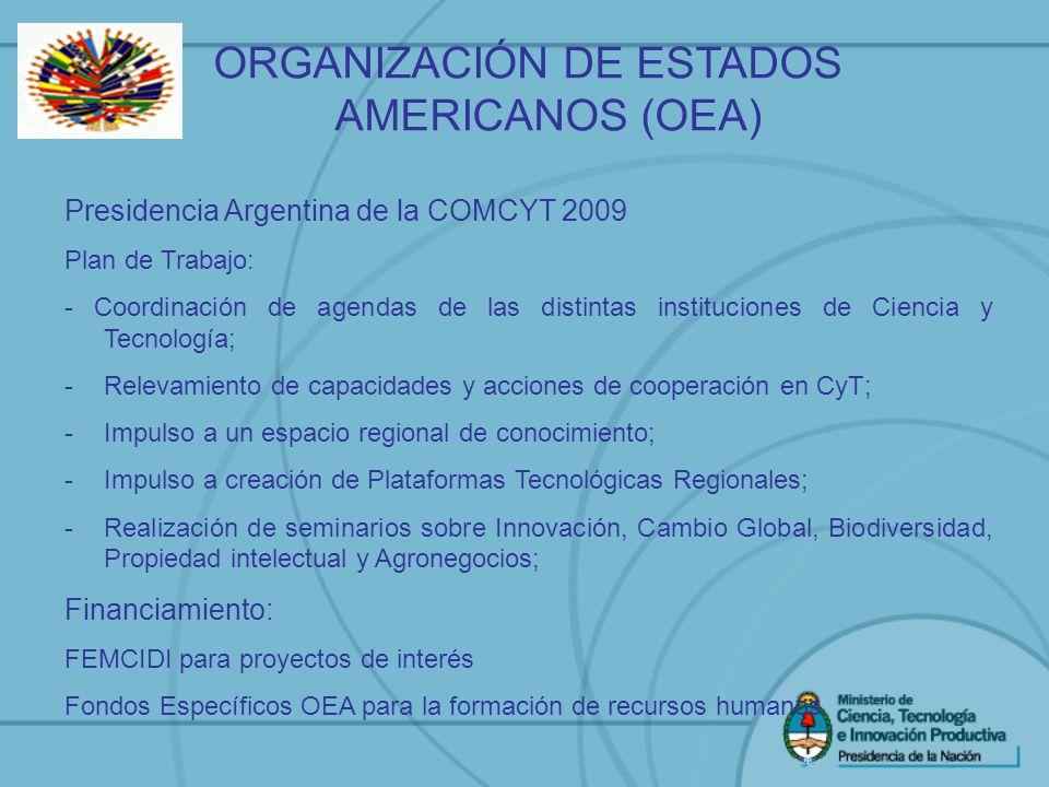 ORGANIZACIÓN DE ESTADOS AMERICANOS (OEA) Presidencia Argentina de la COMCYT 2009 Plan de Trabajo: - Coordinación de agendas de las distintas instituci