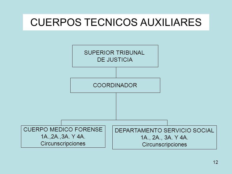 12 CUERPOS TECNICOS AUXILIARES SUPERIOR TRIBUNAL DE JUSTICIA CUERPO MEDICO FORENSE 1A.,2A.,3A. Y 4A. Circunscripciones DEPARTAMENTO SERVICIO SOCIAL 1A