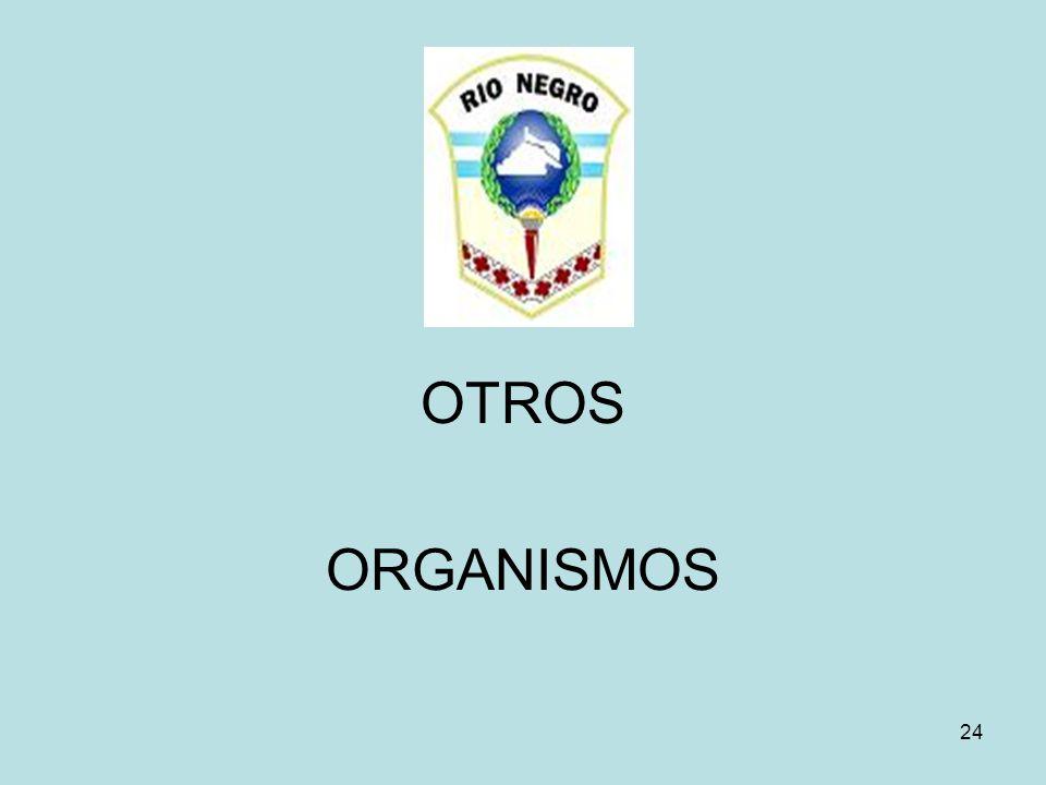 24 OTROS ORGANISMOS