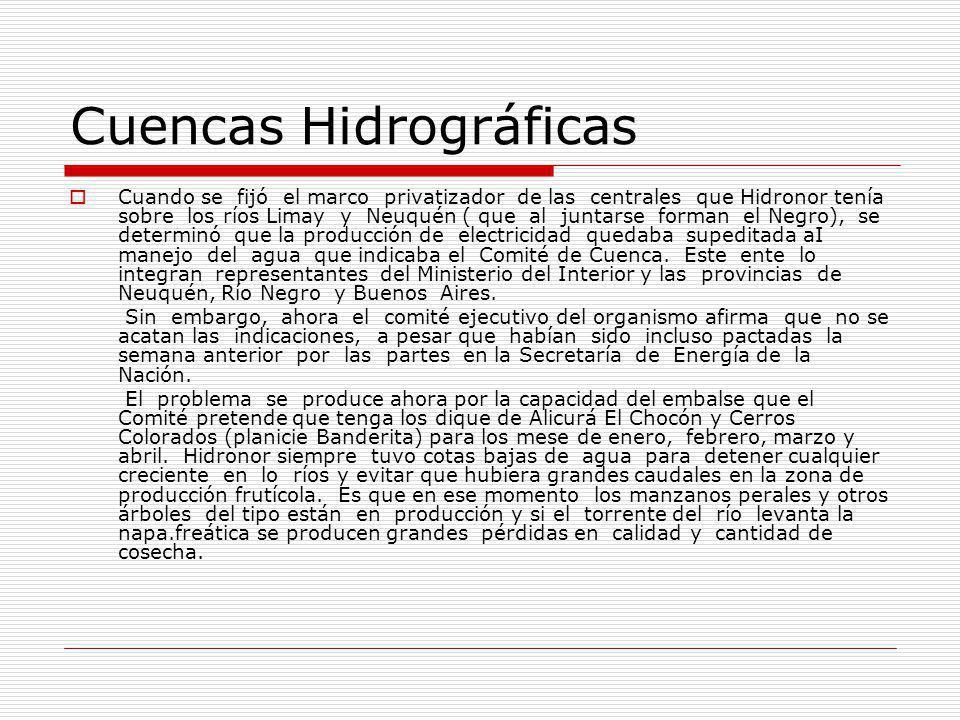 Cuencas Hidrográficas Cuando se fijó el marco privatizador de las centrales que Hidronor tenía sobre los ríos Limay y Neuquén ( que al juntarse forman el Negro), se determinó que la producción de electricidad quedaba supeditada aI manejo del agua que indicaba el Comité de Cuenca.