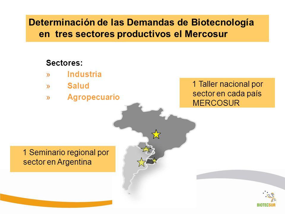 Determinación de las Demandas de Biotecnología en tres sectores productivos el Mercosur Sectores: »Industria »Salud »Agropecuario 1 Taller nacional po