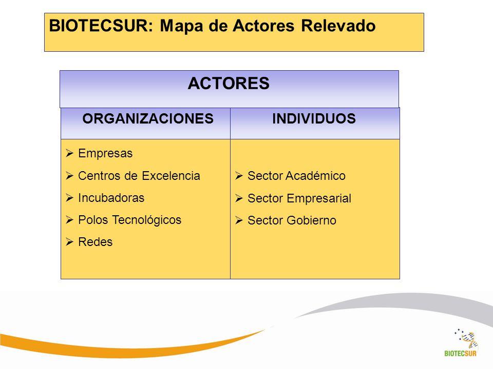 BIOTECSUR: Mapa de Actores Relevado ORGANIZACIONESINDIVIDUOS Sector Académico Sector Empresarial Sector Gobierno Empresas Centros de Excelencia Incuba