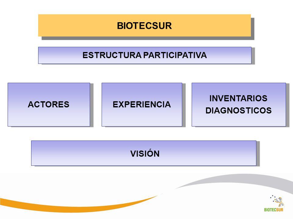 BIOTECSUR ACTORES INVENTARIOS DIAGNOSTICOS INVENTARIOS DIAGNOSTICOS EXPERIENCIA ESTRUCTURA PARTICIPATIVA VISIÓN
