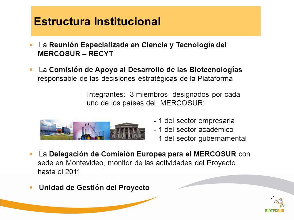 Estructura Institucional La Reunión Especializada en Ciencia y Tecnología del MERCOSUR – RECYT La Comisión de Apoyo al Desarrollo de las Biotecnología