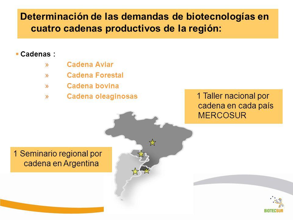 Determinación de las demandas de biotecnologías en cuatro cadenas productivos de la región: Cadenas : »Cadena Aviar »Cadena Forestal »Cadena bovina »C