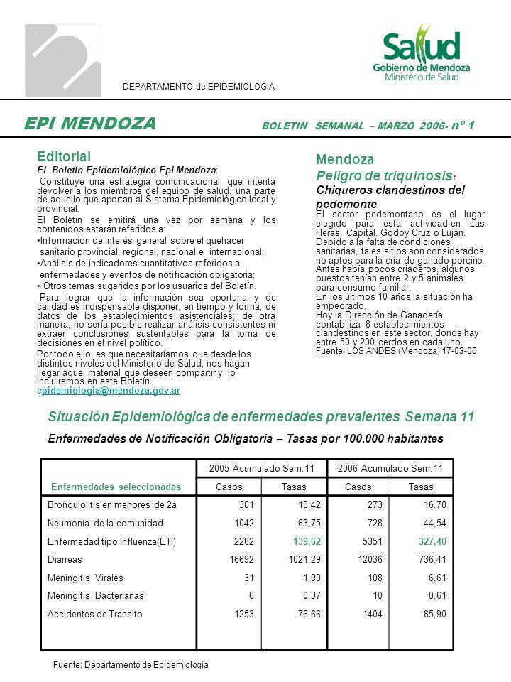 Brote Epidémico de Meningitis Viral en la PROVINCIA DE MENDOZA Entre la semana 46 del 2005 y la 08 de 2006 se registraron en la Provincia de Mendoza 201 casos probables de meningitis viral, con una incidencia de 11.8 por 100.000 habitantes.