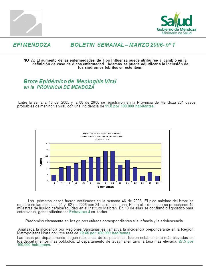 Brote Epidémico de Meningitis Viral en la PROVINCIA DE MENDOZA Entre la semana 46 del 2005 y la 08 de 2006 se registraron en la Provincia de Mendoza 2