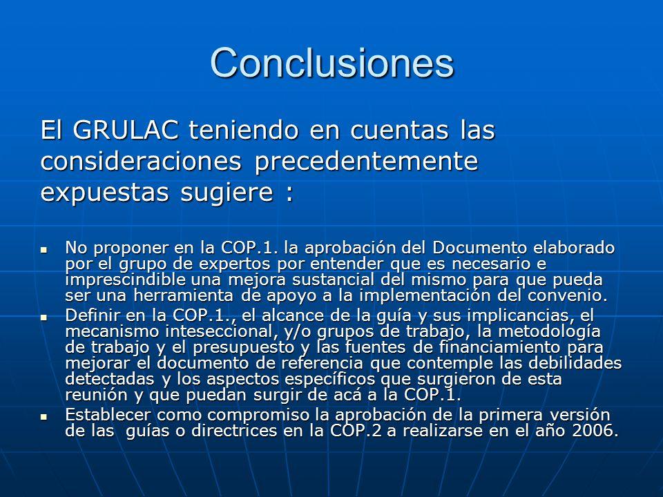 Conclusiones El GRULAC teniendo en cuentas las consideraciones precedentemente expuestas sugiere : No proponer en la COP.1.