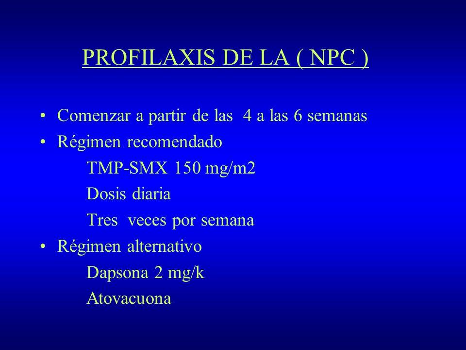 PROFILAXIS DE LA ( NPC ) Comenzar a partir de las 4 a las 6 semanas Régimen recomendado TMP-SMX 150 mg/m2 Dosis diaria Tres veces por semana Régimen a