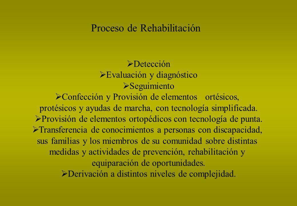 Proceso de Rehabilitación Detección Evaluación y diagnóstico Seguimiento Confección y Provisión de elementos ortésicos, protésicos y ayudas de marcha,