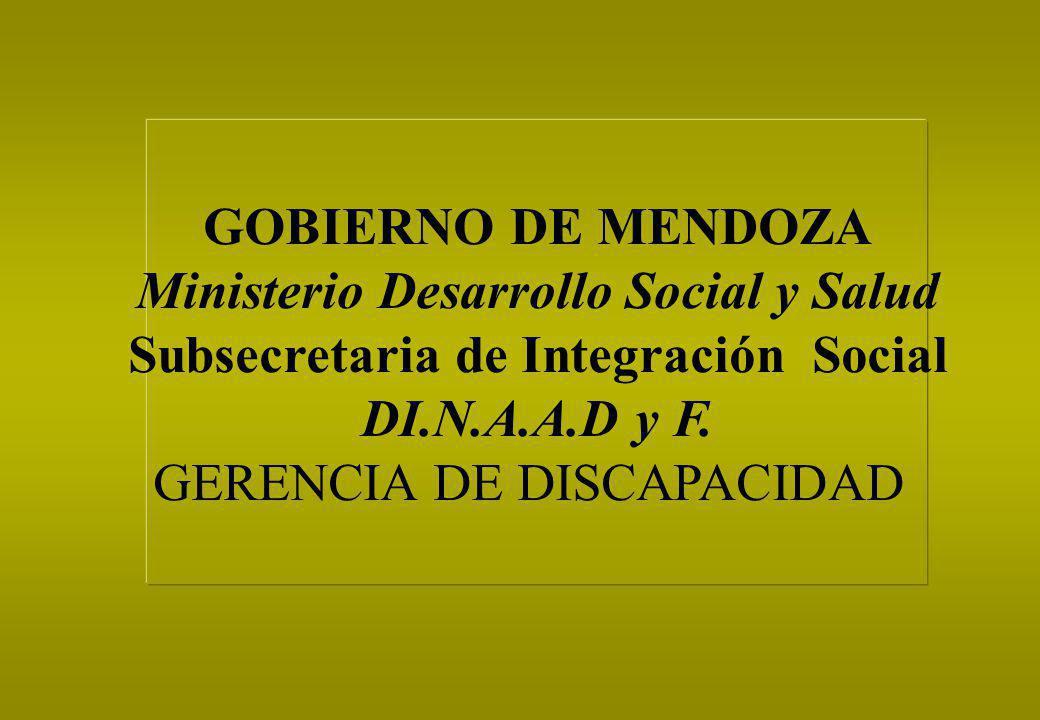GOBIERNO DE MENDOZA Ministerio Desarrollo Social y Salud Subsecretaria de Integración Social DI.N.A.A.D y F. GERENCIA DE DISCAPACIDAD