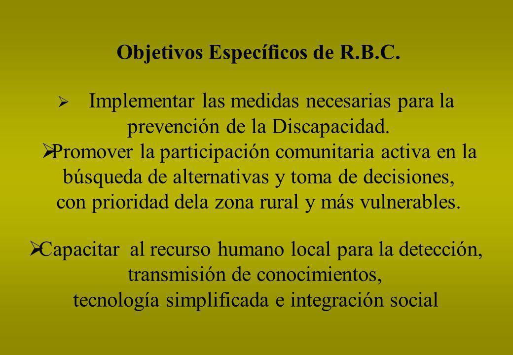 Objetivos Específicos de R.B.C. Implementar las medidas necesarias para la prevención de la Discapacidad. Promover la participación comunitaria activa