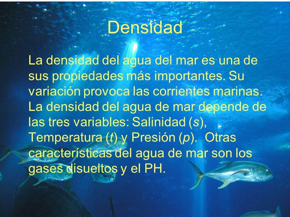 Densidad La densidad del agua del mar es una de sus propiedades más importantes. Su variación provoca las corrientes marinas. La densidad del agua de