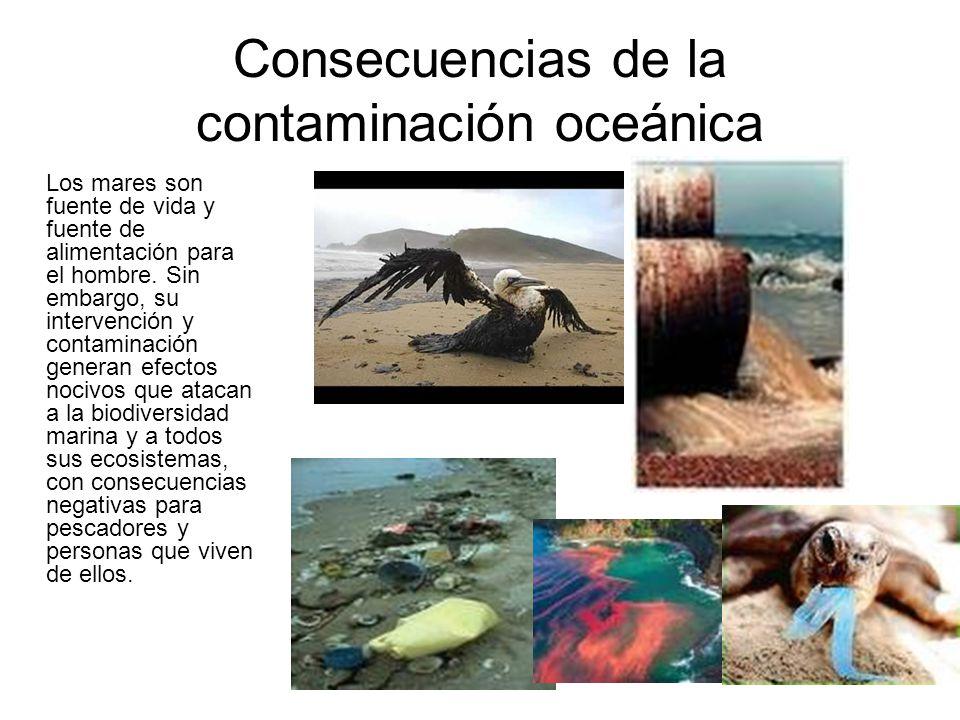 Consecuencias de la contaminación oceánica Los mares son fuente de vida y fuente de alimentación para el hombre. Sin embargo, su intervención y contam