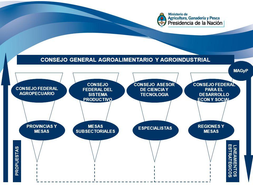 22 REGIONES Y MESAS CONSEJO FEDERAL PARA EL DESARROLLO ECON Y SOCIAL CONSEJOFEDERAL AGROECUARIO CONSEJO GENERAL AGROALIMENTARIO Y AGROINDUSTRIAL CONSE