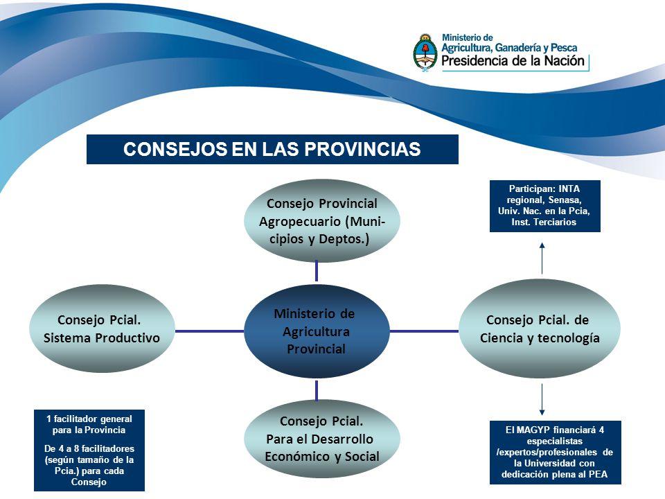27 CONSEJOS EN LAS PROVINCIAS Consejo Provincial Agropecuario (Muni- cipios y Deptos.) Consejo Pcial. Sistema Productivo Consejo Pcial. Para el Desarr