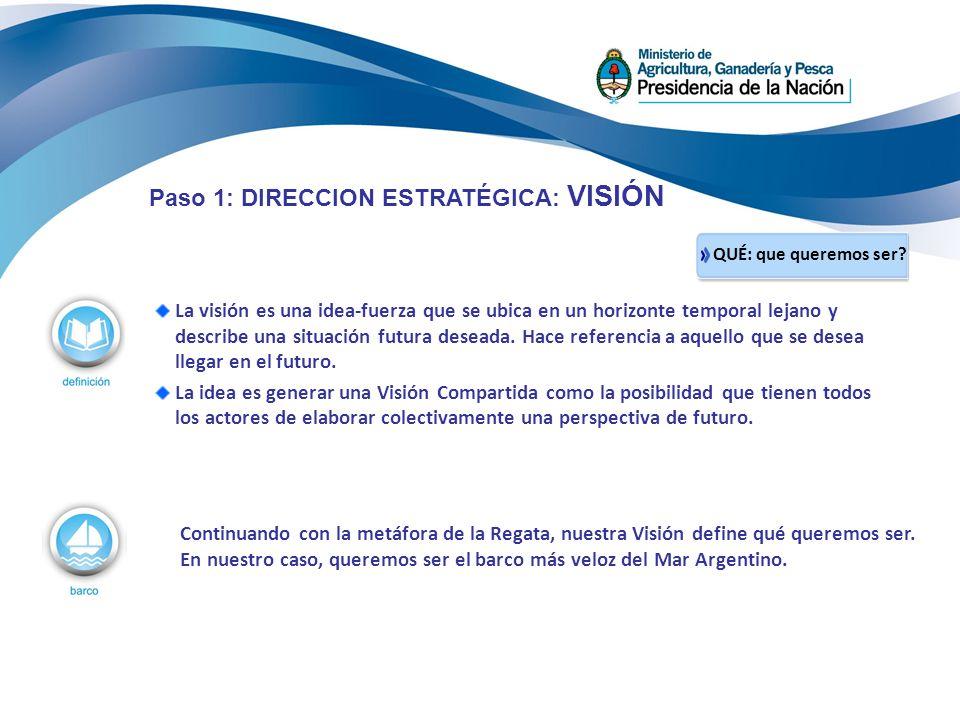 La visión es una idea-fuerza que se ubica en un horizonte temporal lejano y describe una situación futura deseada. Hace referencia a aquello que se de