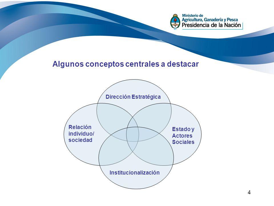 4 Algunos conceptos centrales a destacar Dirección Estratégica Relación individuo/ sociedad Institucionalización Estado y Actores Sociales