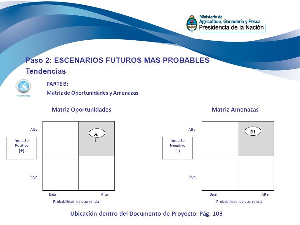 Paso 2: ESCENARIOS FUTUROS MAS PROBABLES Tendencias PARTE B: Matriz de Oportunidades y Amenazas Matriz Oportunidades Impacto Positivo (+) Alto Bajo Ma