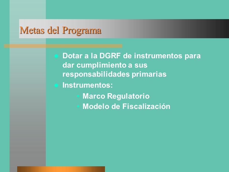 Metas del Programa Dotar a la DGRF de instrumentos para dar cumplimiento a sus responsabilidades primarias Instrumentos: Marco Regulatorio Modelo de Fiscalización