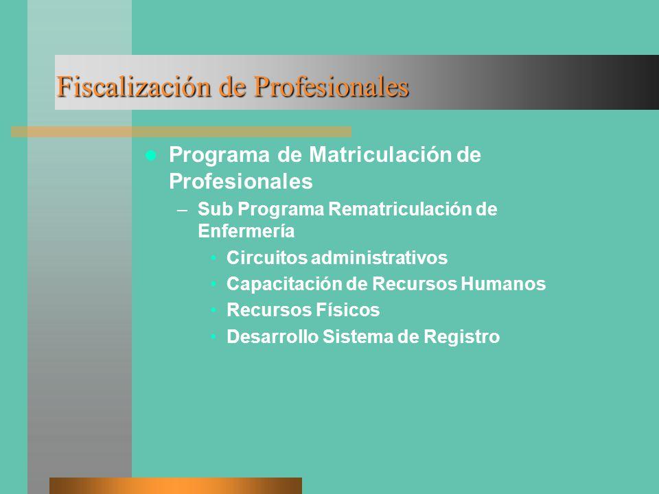 Fiscalización de Profesionales Programa de Matriculación de Profesionales –Sub Programa Rematriculación de Enfermería Circuitos administrativos Capacitación de Recursos Humanos Recursos Físicos Desarrollo Sistema de Registro