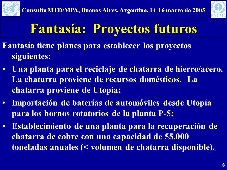 Consulta MTD/MPA, Buenos Aires, Argentina, 14-16 marzo de 2005 8 Fantasía: Proyectos futuros Fantasía tiene planes para establecer los proyectos sigui