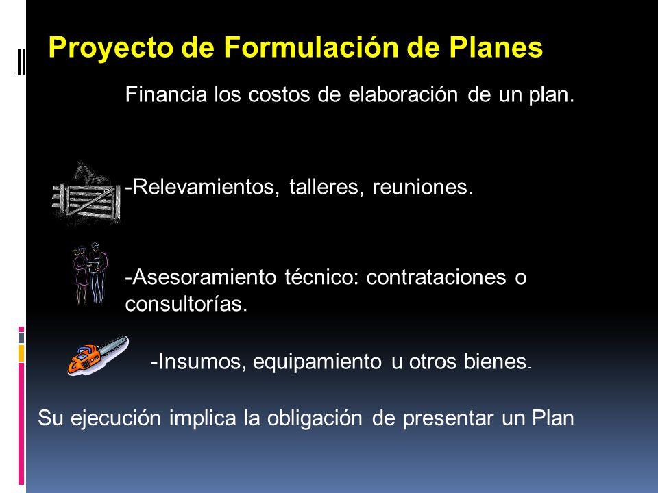 Proyecto de Formulación de Planes Financia los costos de elaboración de un plan. -Relevamientos, talleres, reuniones. Su ejecución implica la obligaci