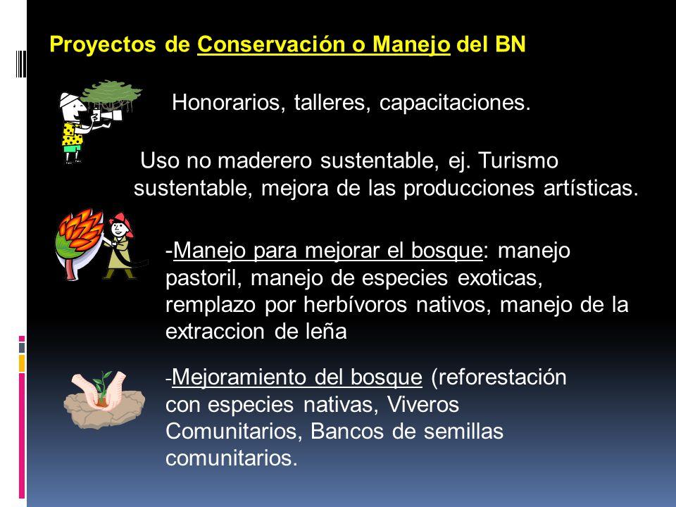 Proyectos de Conservación o Manejo del BN variantes de un PC - Mejoramiento del bosque (reforestación con especies nativas, Viveros Comunitarios, Banc