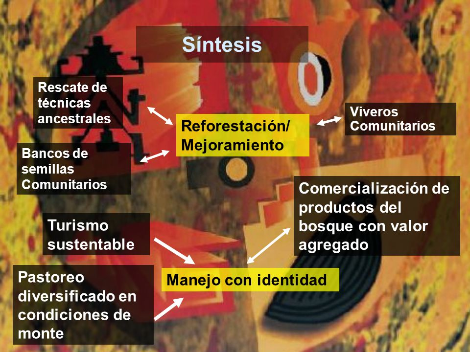 Síntesis Reforestación/ Mejoramiento Bancos de semillas Comunitarios Viveros Comunitarios Manejo con identidad Turismo sustentable Pastoreo diversific