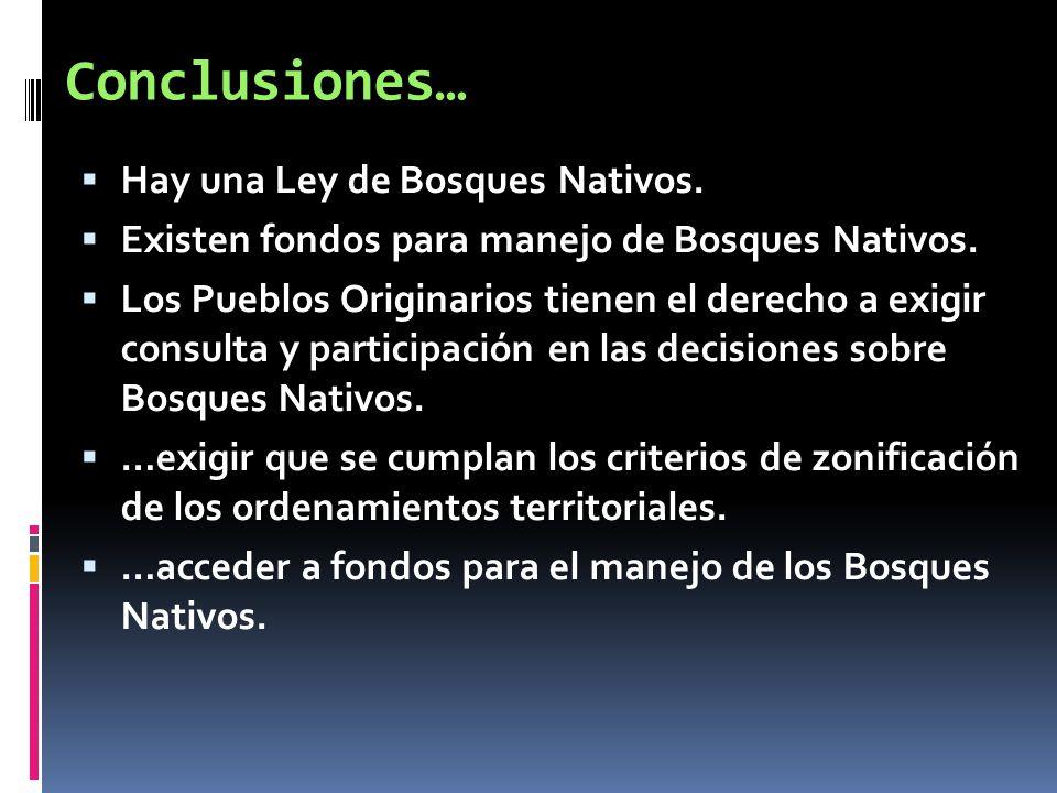 Conclusiones… Hay una Ley de Bosques Nativos. Existen fondos para manejo de Bosques Nativos. Los Pueblos Originarios tienen el derecho a exigir consul